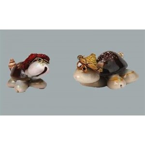 Toptan Deniz Kabuğu Kaplumbağa İlginç Nikah Şekeri Malzemeleri
